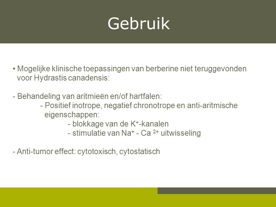 Gebruik Mogelijke klinische toepassingen van berberine niet teruggevonden. voor Hydrastis canadensis: