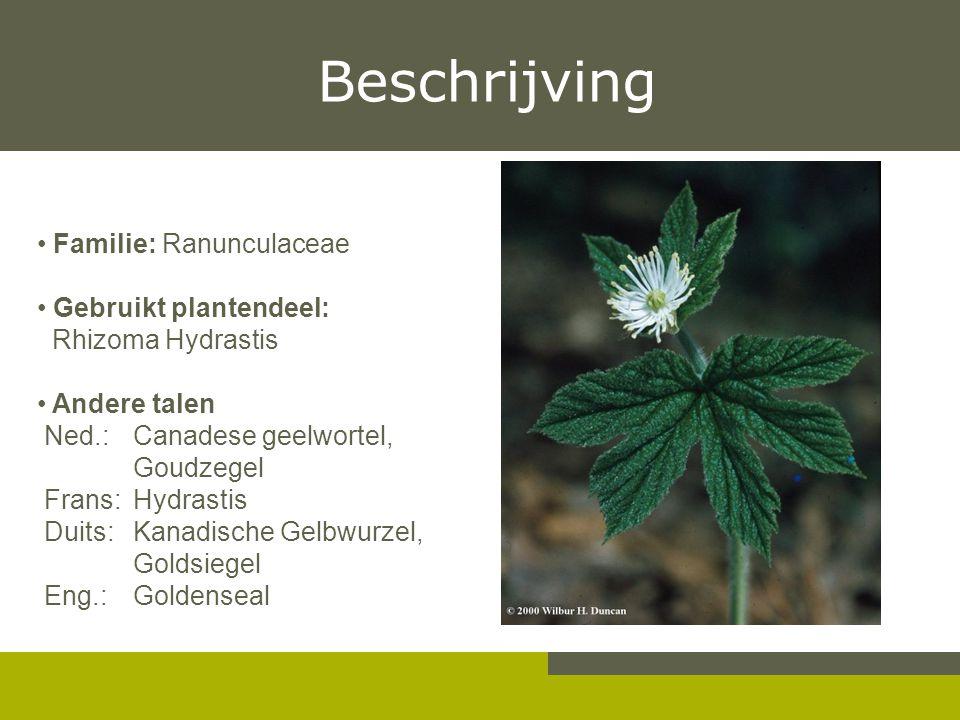 Beschrijving Familie: Ranunculaceae Gebruikt plantendeel:
