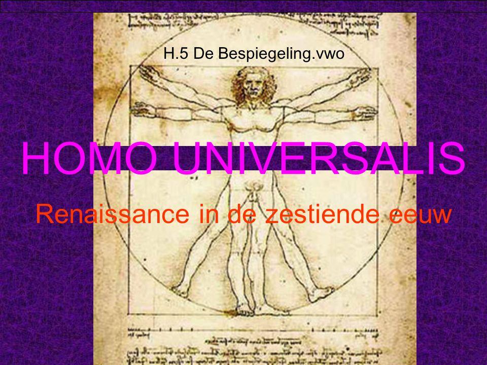 Renaissance in de zestiende eeuw