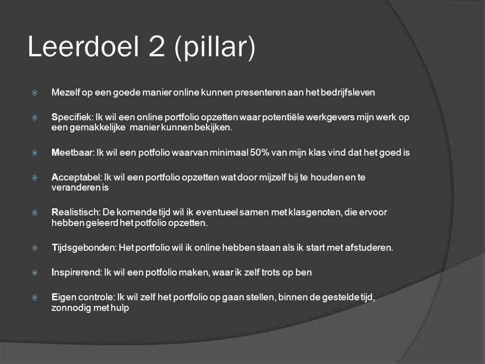 Leerdoel 2 (pillar) Mezelf op een goede manier online kunnen presenteren aan het bedrijfsleven.