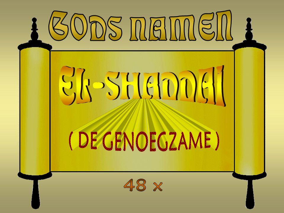 GODS NAMEN EL-SHADDAI ( DE GENOEGZAME ) 48 x