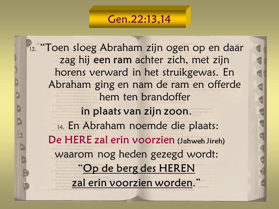 14. En Abraham noemde die plaats: