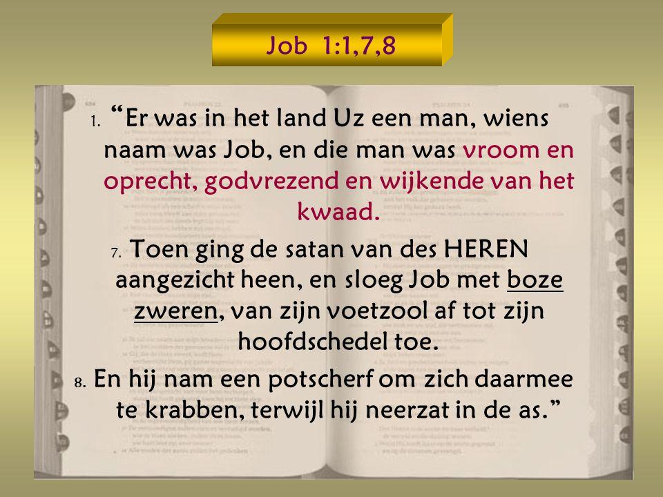 Job 1:1,7,8 1. Er was in het land Uz een man, wiens naam was Job, en die man was vroom en oprecht, godvrezend en wijkende van het kwaad.