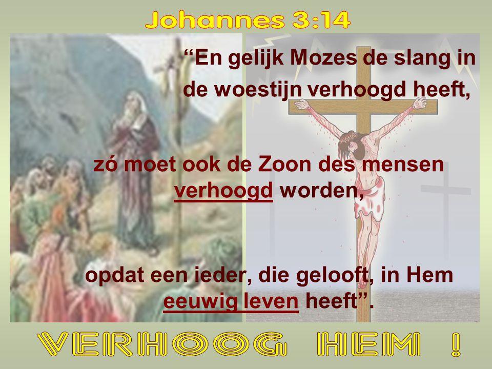 Johannes 3:14 VERHOOG HEM ! En gelijk Mozes de slang in