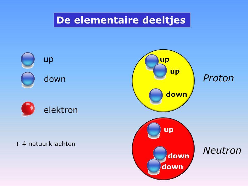De elementaire deeltjes