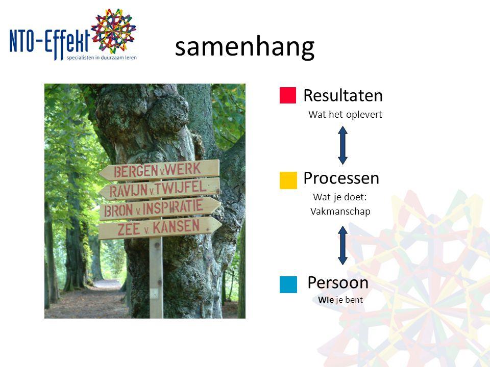 samenhang Resultaten Processen Persoon Wat het oplevert Wat je doet: