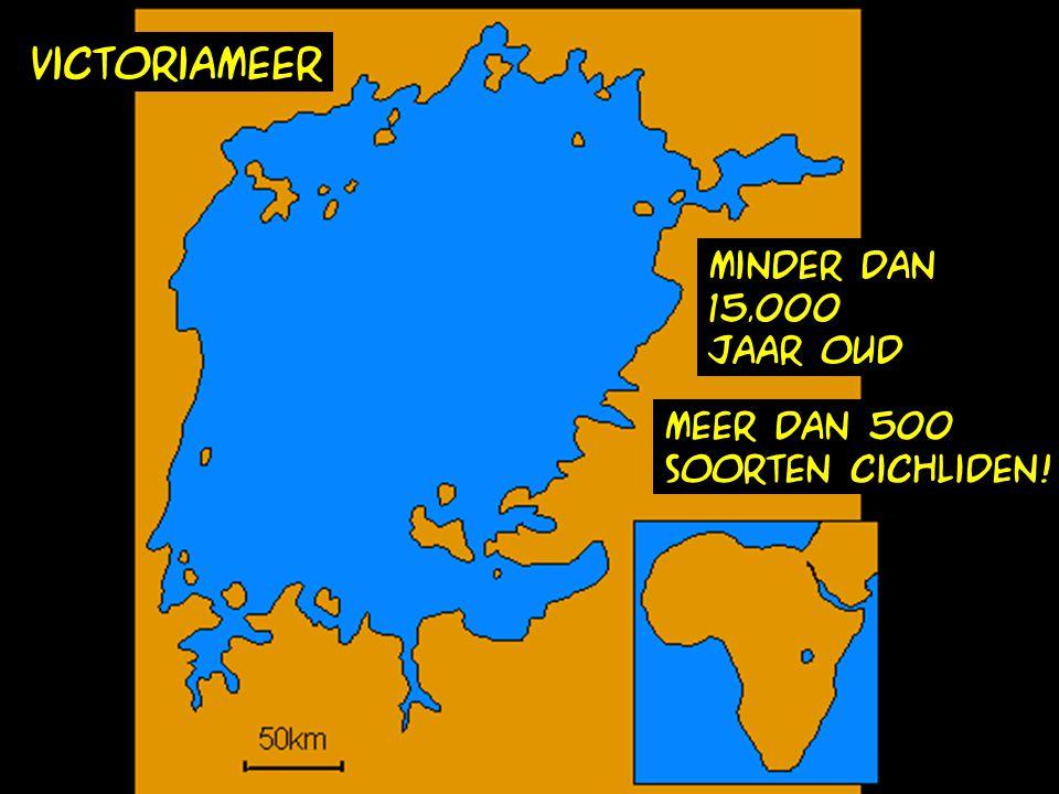 victoriameer minder dan 15.000 jaar oud meer dan 500