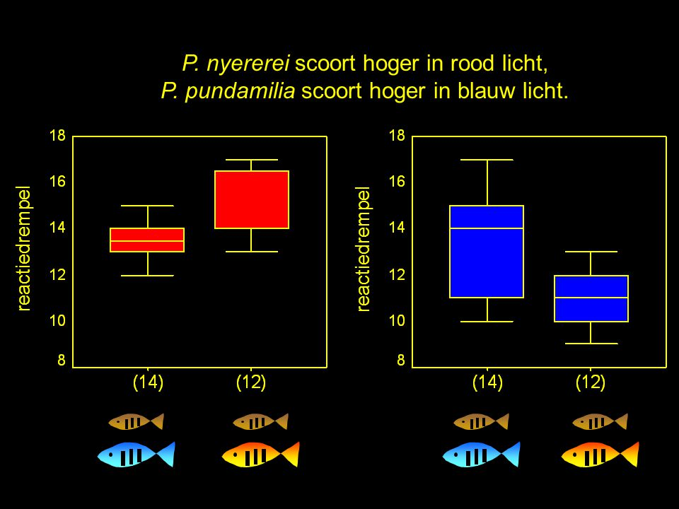 P. nyererei scoort hoger in rood licht,