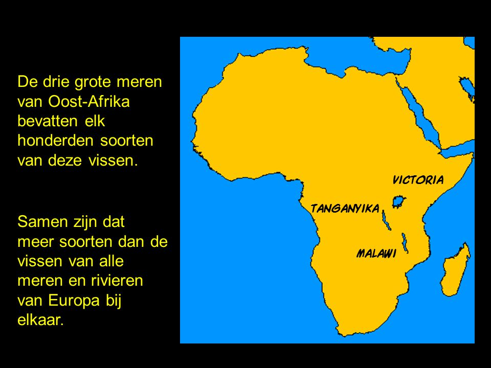 De drie grote meren van Oost-Afrika bevatten elk