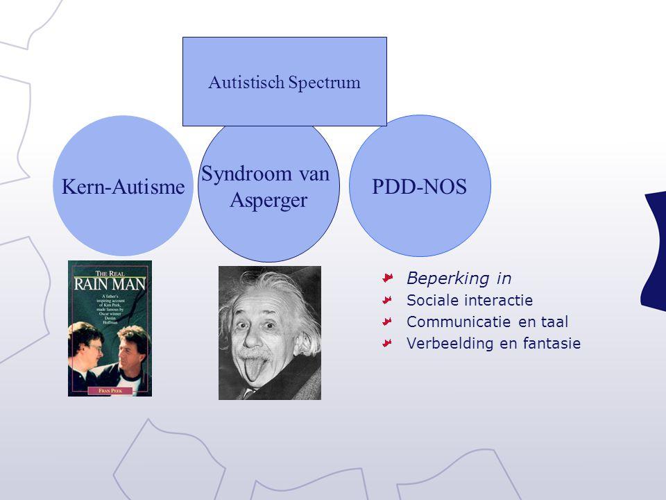 Syndroom van Asperger Kern-Autisme PDD-NOS Autistisch Spectrum