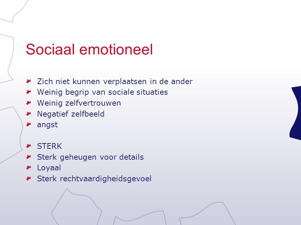 Sociaal emotioneel Zich niet kunnen verplaatsen in de ander