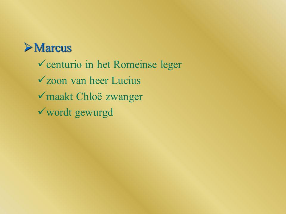 Marcus centurio in het Romeinse leger zoon van heer Lucius