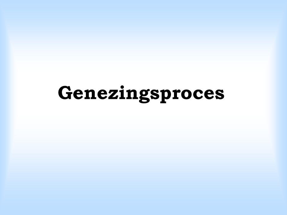 Genezingsproces