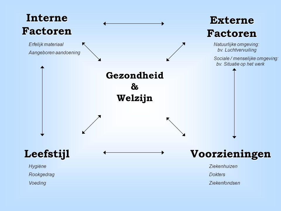 Interne Factoren Externe Factoren Leefstijl Voorzieningen