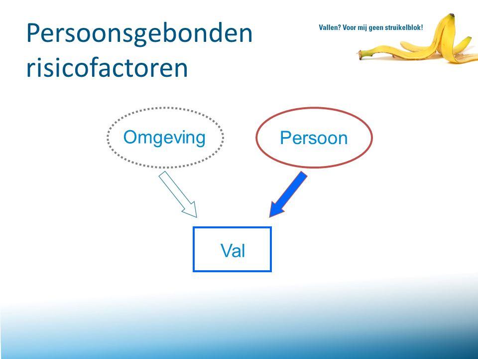 Persoonsgebonden risicofactoren Omgeving Persoon Val Sheet 23