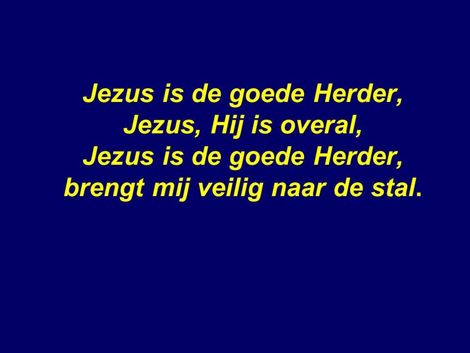 Jezus is de goede Herder, Jezus, Hij is overal, Jezus is de goede Herder, brengt mij veilig naar de stal.