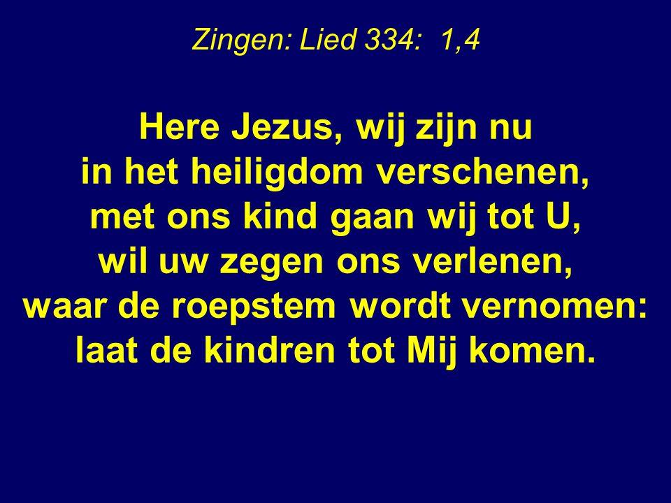 Zingen: Lied 334: 1,4 Here Jezus, wij zijn nu in het heiligdom verschenen, met ons kind gaan wij tot U, wil uw zegen ons verlenen, waar de roepstem wordt vernomen: laat de kindren tot Mij komen.