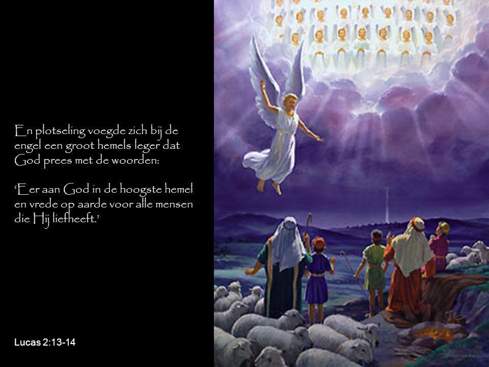 En plotseling voegde zich bij de engel een groot hemels leger dat