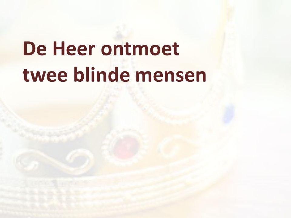 De Heer ontmoet twee blinde mensen