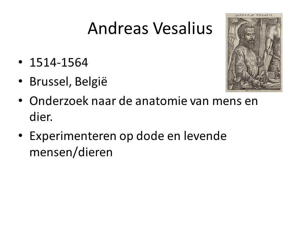 Andreas Vesalius 1514-1564 Brussel, België