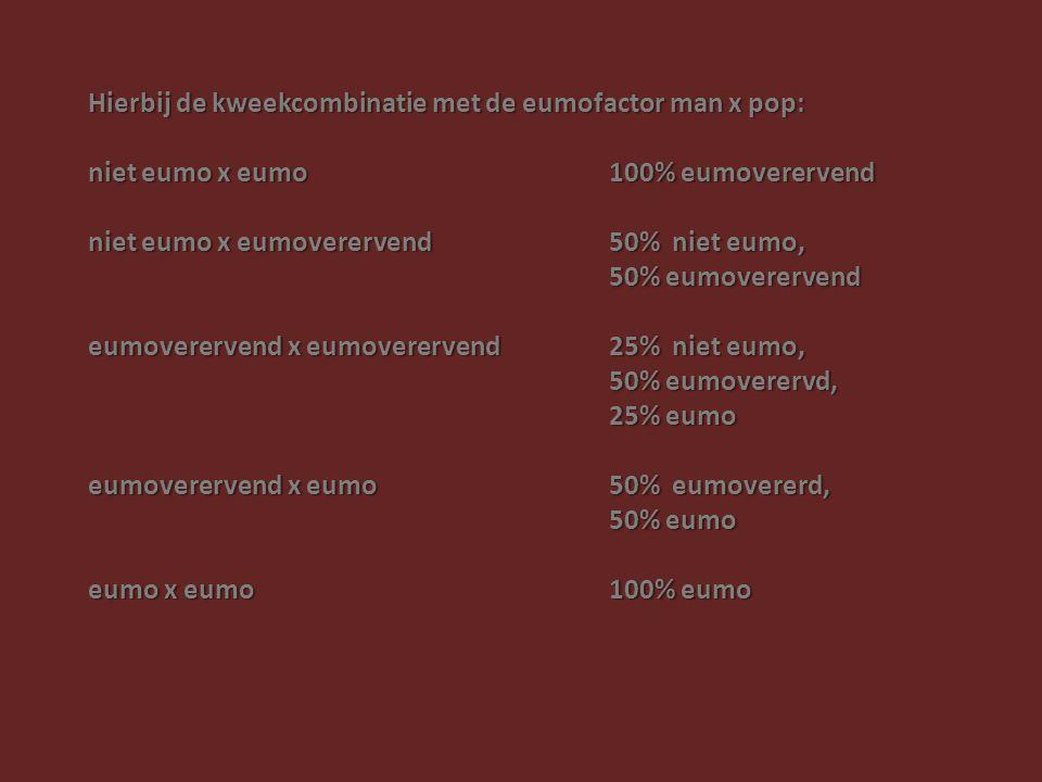 Hierbij de kweekcombinatie met de eumofactor man x pop: