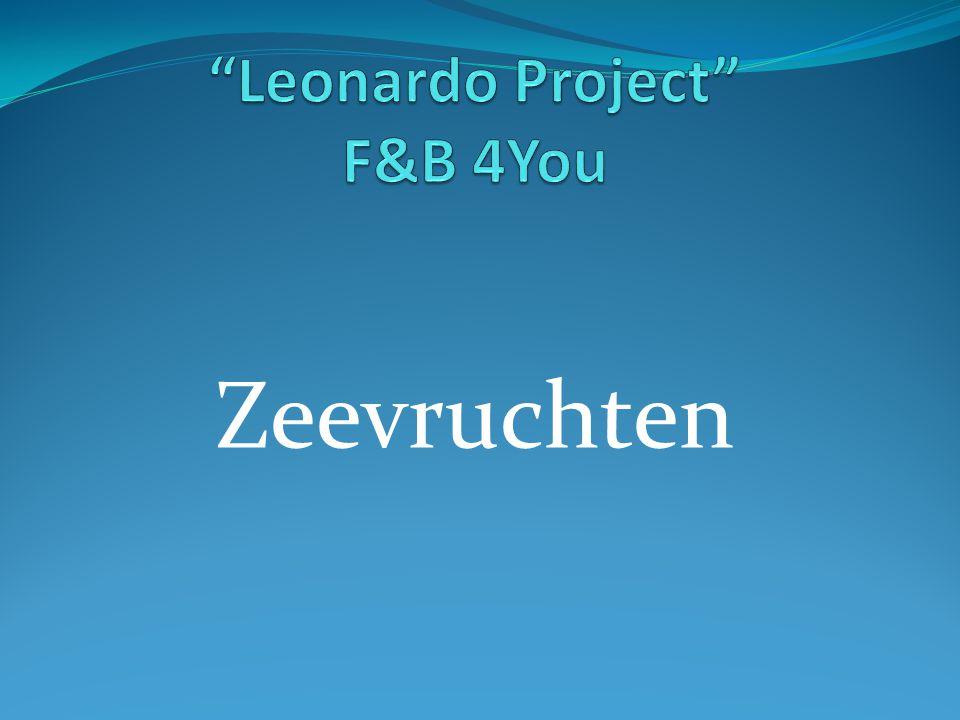 Leonardo Project F&B 4You