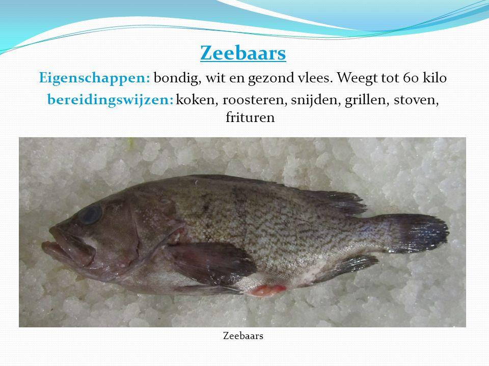 Zeebaars Eigenschappen: bondig, wit en gezond vlees. Weegt tot 60 kilo