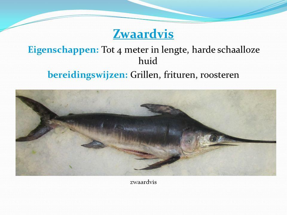 Zwaardvis Eigenschappen: Tot 4 meter in lengte, harde schaalloze huid