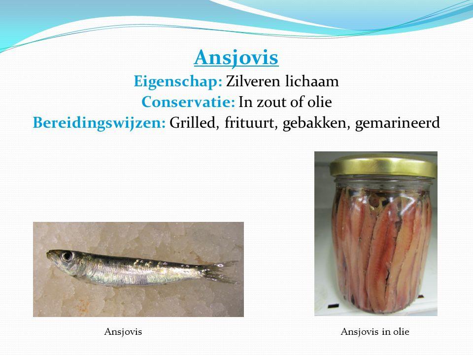 Ansjovis Eigenschap: Zilveren lichaam Conservatie: In zout of olie