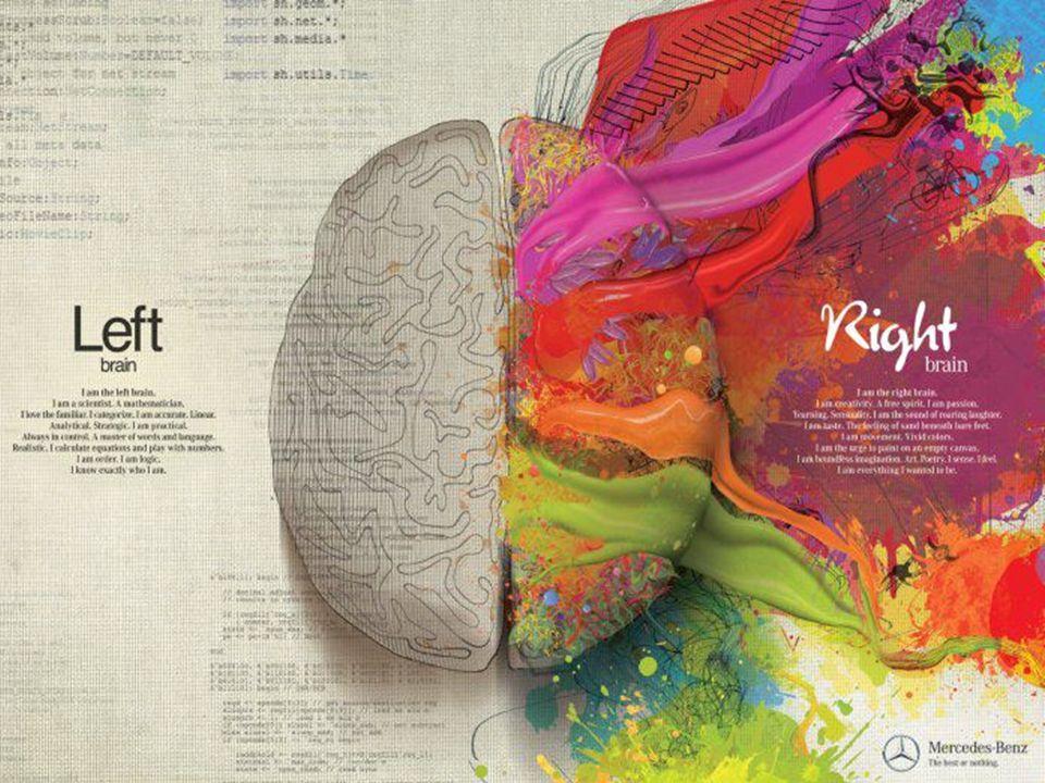 PAUL Adultes: 98% logique – 2% creatif. Enfants: invers: 2% logic et 98% creatif. Message: essayer d'être enfant + Exercise.