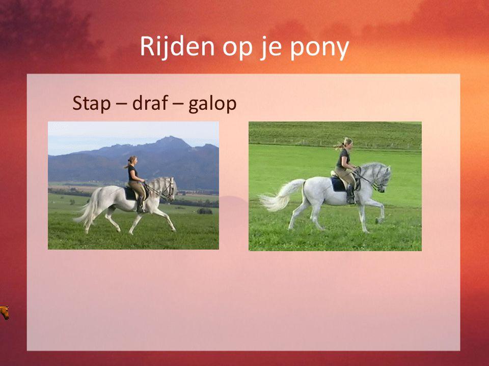 Rijden op je pony Stap – draf – galop