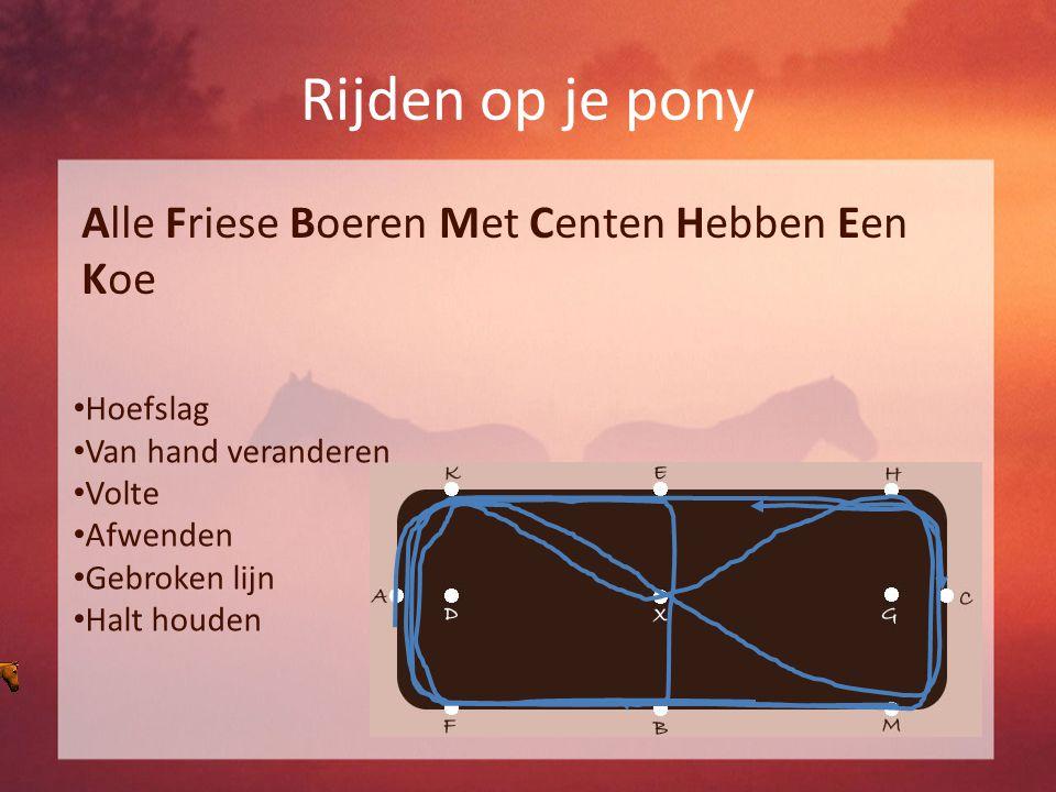 Rijden op je pony Alle Friese Boeren Met Centen Hebben Een Koe