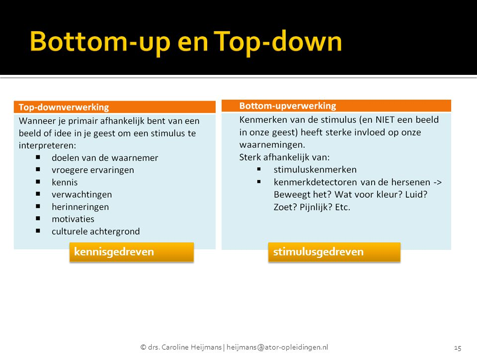 Bottom-up en Top-down kennisgedreven stimulusgedreven