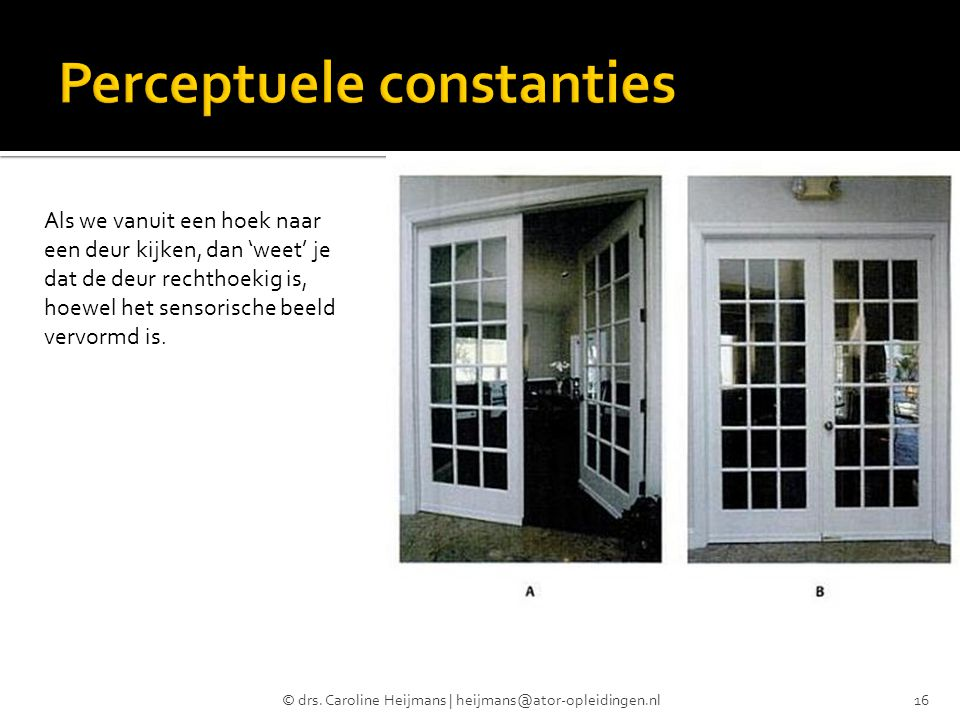 Perceptuele constanties