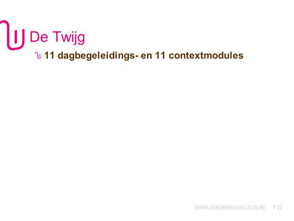 De Twijg 11 dagbegeleidings- en 11 contextmodules