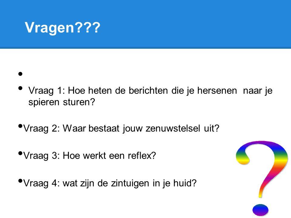 Vragen Vraag 1: Hoe heten de berichten die je hersenen naar je spieren sturen Vraag 2: Waar bestaat jouw zenuwstelsel uit