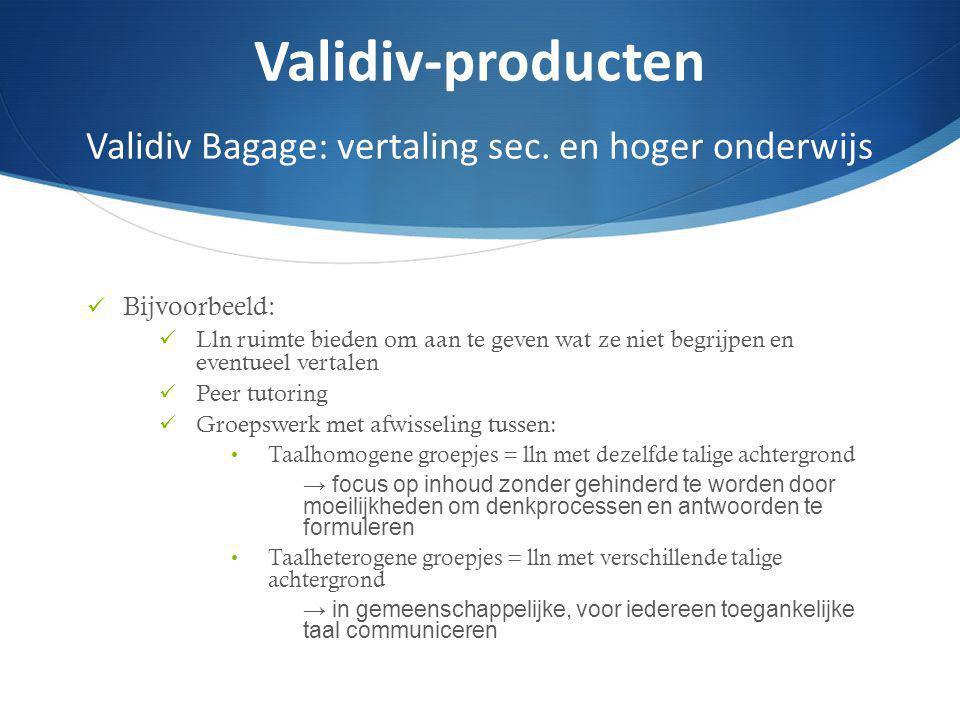 Validiv-producten Validiv Bagage: vertaling sec. en hoger onderwijs