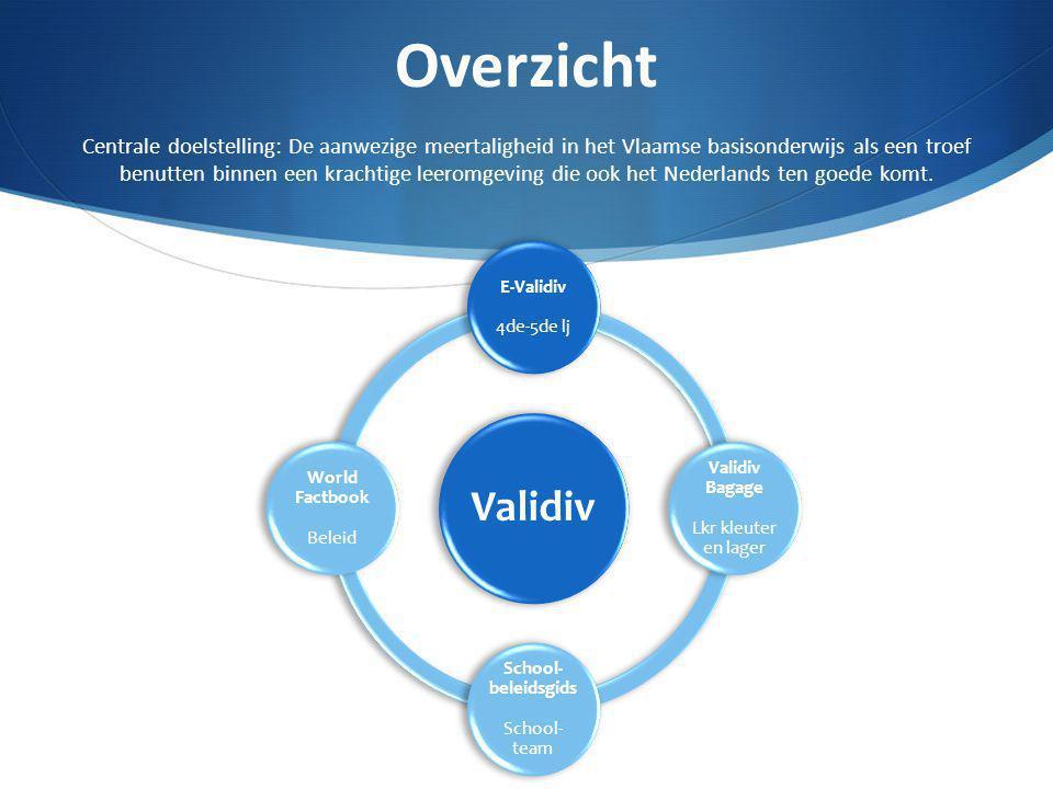 Overzicht Centrale doelstelling: De aanwezige meertaligheid in het Vlaamse basisonderwijs als een troef benutten binnen een krachtige leeromgeving die ook het Nederlands ten goede komt.