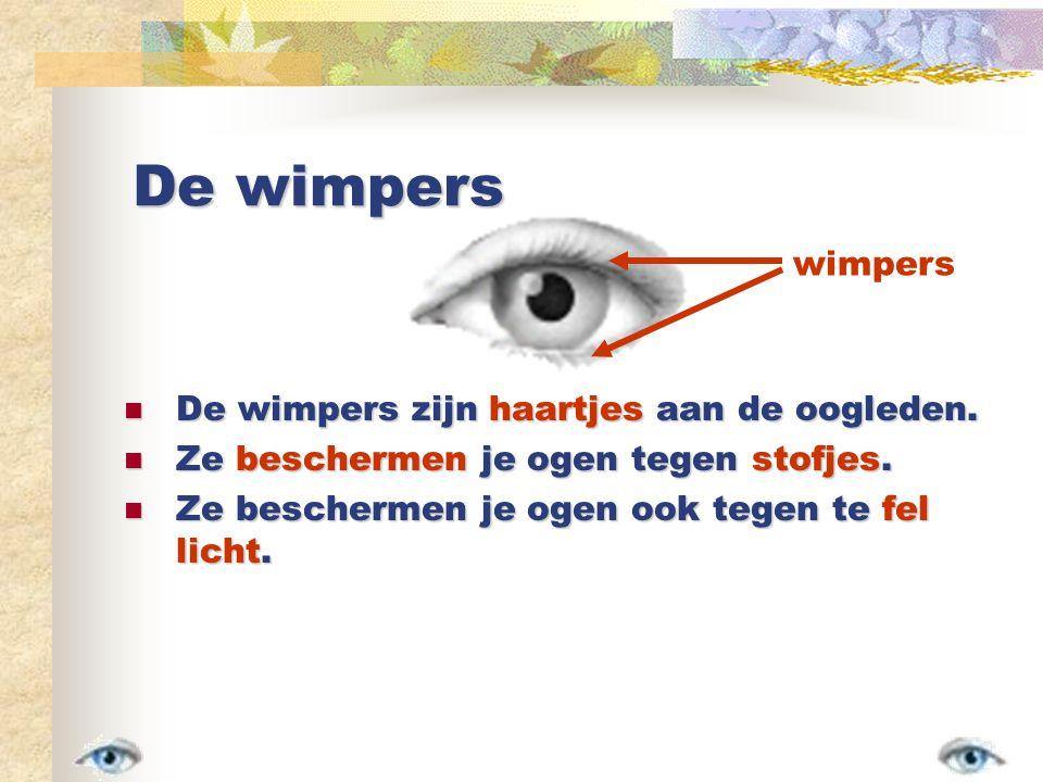 De wimpers wimpers De wimpers zijn haartjes aan de oogleden.