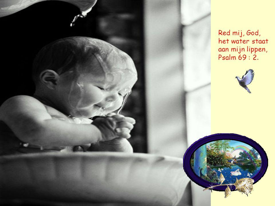 Red mij, God, het water staat aan mijn lippen, Psalm 69 : 2.