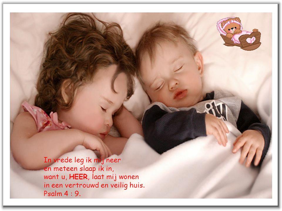 In vrede leg ik mij neer en meteen slaap ik in, want u, HEER, laat mij wonen. in een vertrouwd en veilig huis.