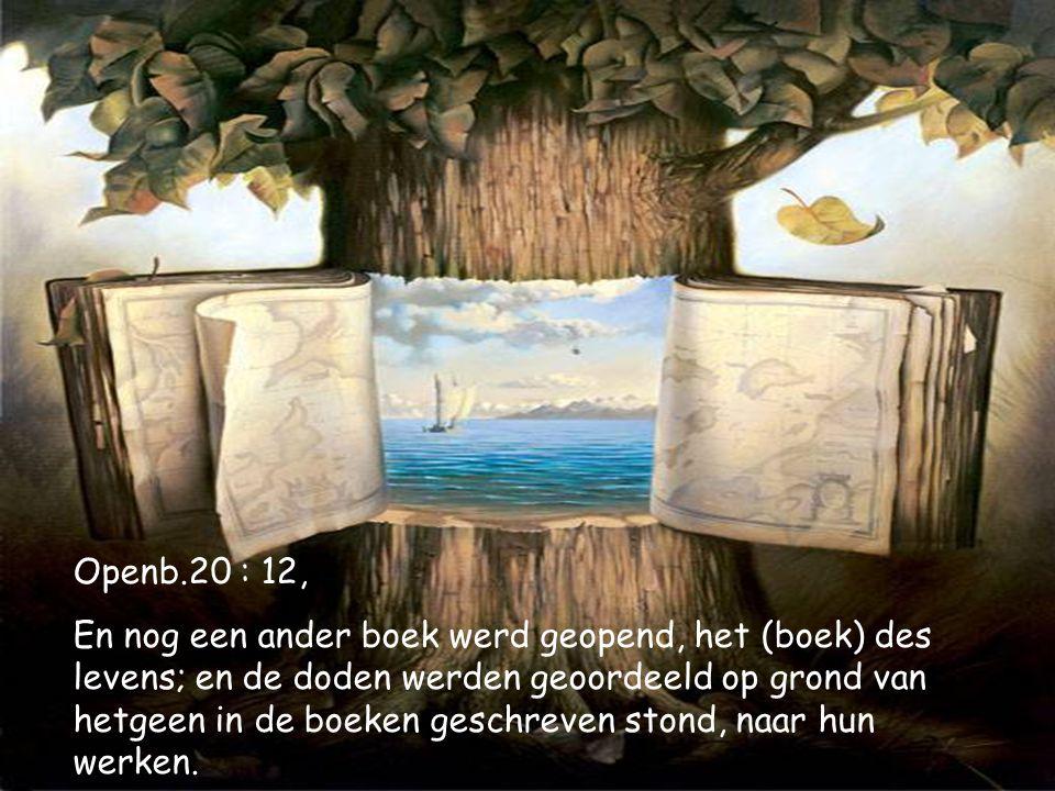 Openb.20 : 12,