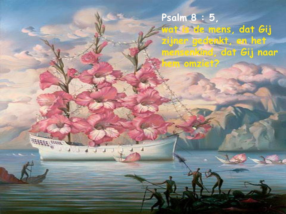 Psalm 8 : 5, wat is de mens, dat Gij zijner gedenkt, en het mensenkind, dat Gij naar hem omziet