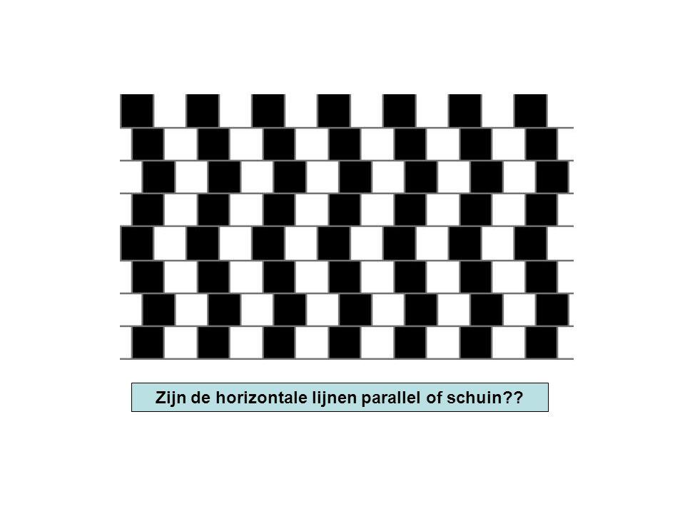 Zijn de horizontale lijnen parallel of schuin