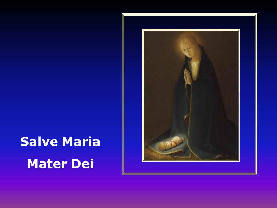 Salve Maria Mater Dei