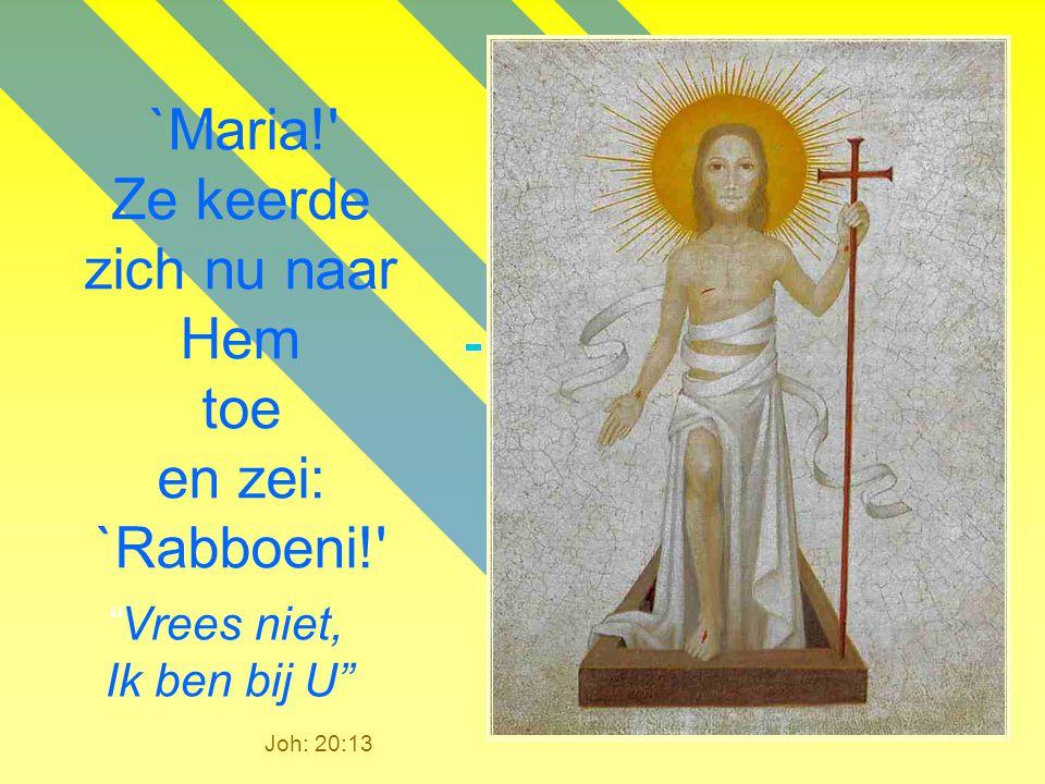 `Maria! Ze keerde zich nu naar Hem toe en zei: `Rabboeni!