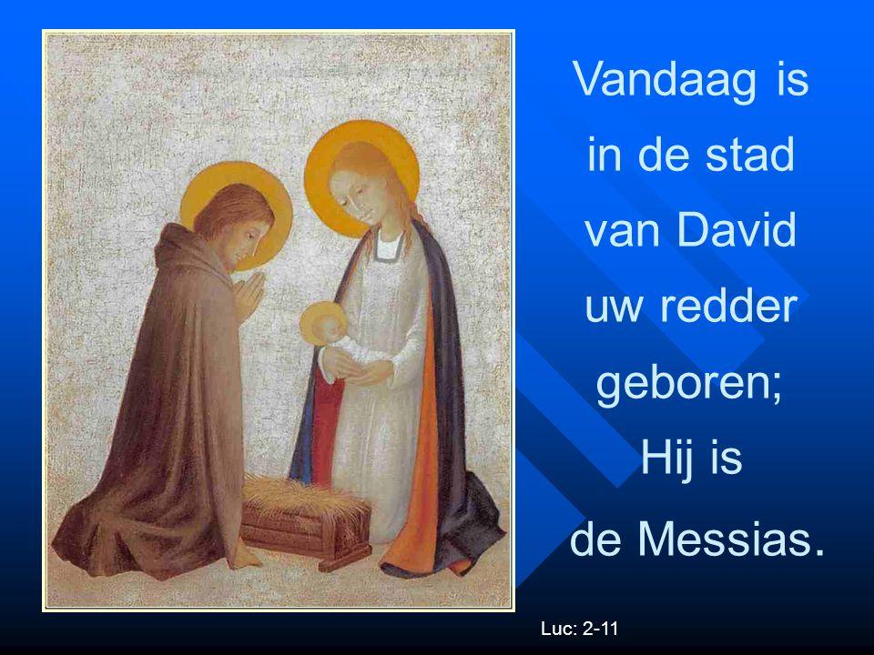 Vandaag is in de stad van David uw redder geboren; Hij is de Messias.