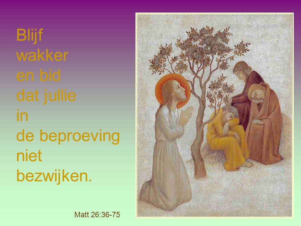 Blijf wakker en bid dat jullie in de beproeving niet bezwijken.
