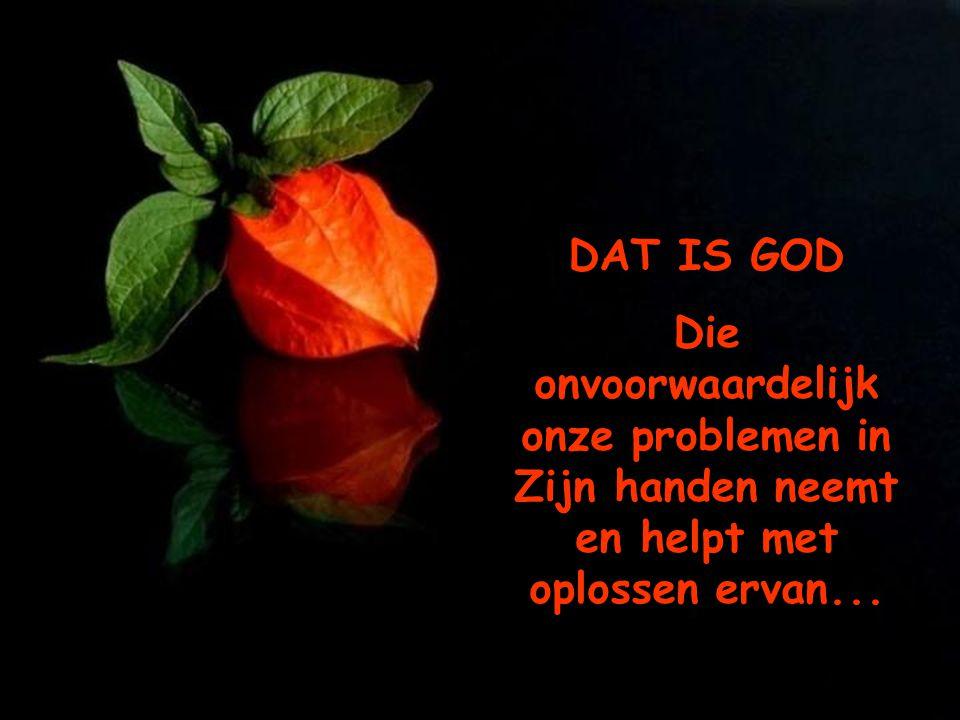DAT IS GOD Die onvoorwaardelijk onze problemen in Zijn handen neemt en helpt met oplossen ervan...