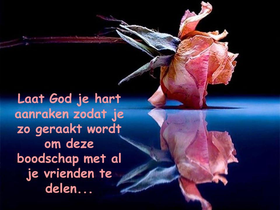 Laat God je hart aanraken zodat je zo geraakt wordt om deze boodschap met al je vrienden te delen...